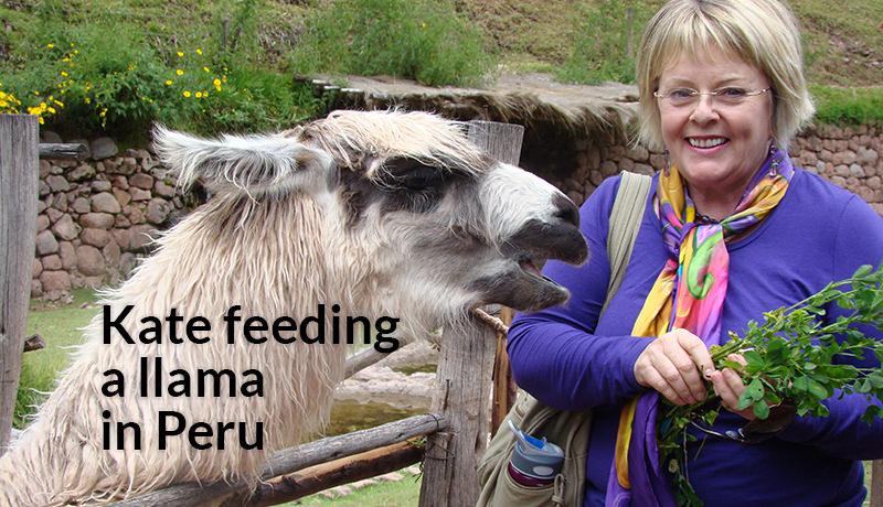 Kate feeding llama in Peru