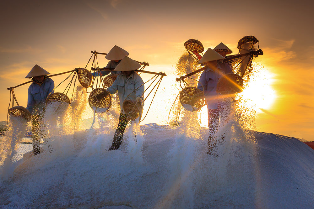 Making salt in Vietnam